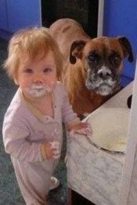 фото Воспитание детей в возрасте от 6 мес до 1, 5 лет