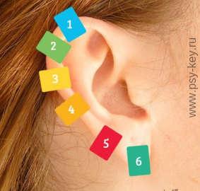 изображение Рефлекторная психотерапия точки на ухе